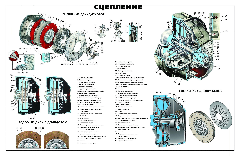 Схема устройства сцепления ЯМЗ